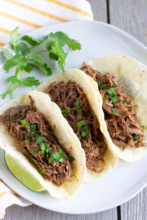 Three shredded beef tacos arranged on a white plate with a slice of lime on the side.