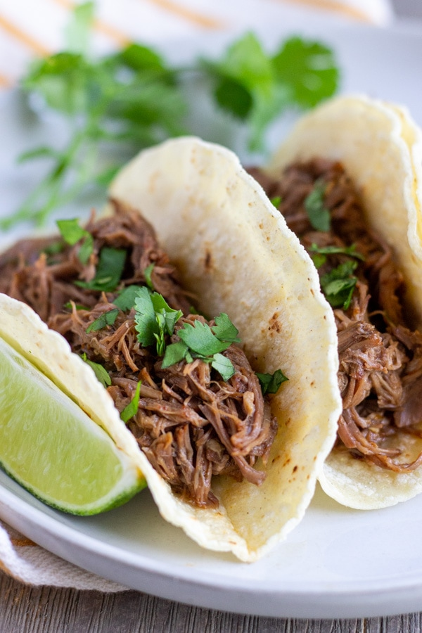 Up close view of beef tacos arranged on a white plate with a slice of lime on the side.